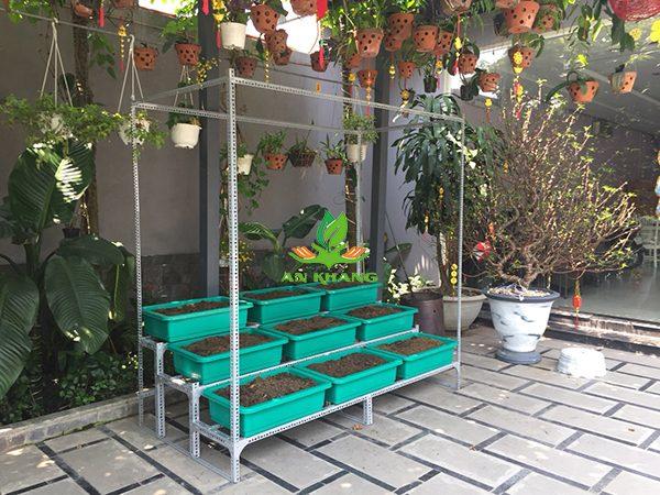 Kệ trồng rau 3 tầng có giàn leo