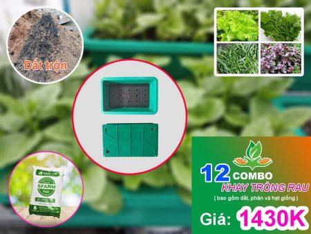 Combo 12 khay trồng rau